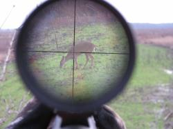 Getting started with hunting